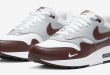 Nike Air Max 1 - Mystic Dates Burgundy (DB5074-101)