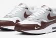 Nike Air Max 1 - Mystic Dates Burgundy (DB5074-101)