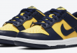 Nike Dunk Low - Michigan (DD1391-700)