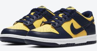 Nike Dunk Low - Michigan (DD1391-700)