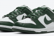 Release datum van de Nike Dunk Low - Team Green (DD1391-101)