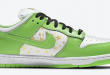 Sneak release van de Supreme x Nike SB Dunk Low – Mean Green (DH3228-101)