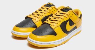 Newsflash - Nike Dunk Low - 'Iowa' (DD1391-004)