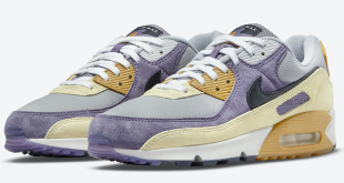 Nike Air Max 90 NRG - 'Court Purple' (DC6083-500)